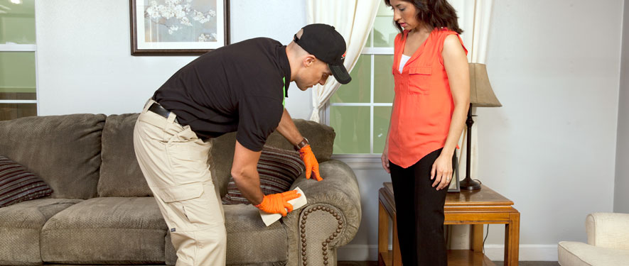 Jackson, OH carpet upholstery cleaning
